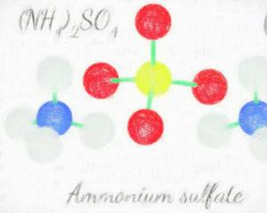 硫安分画によるタンパク粗分画 【アセトン沈殿、TCA沈殿も】